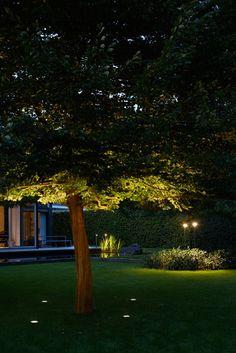 20+ Landscape Lighting Design Ideas | Pool Dinner - Indigenous ...