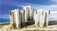 Resale BPTP Spacio Sector 37 D Gurgaon #ResaleApartments #ResaleBPTPspacio #ResaleSector37D