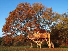 la magnifique cabane du Perche, en automne