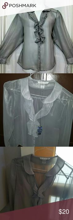 Peter Nygard sheer blouse! Perfect for the office but still sexy.  Only worn once, in great shape!  Sheer perfection!!  :) Peter Nygard Tops Blouses