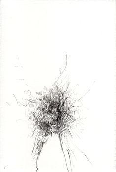 255 Seed Bank, Dandelion, Seeds, Drawings, Flowers, Plants, Dandelions, Sketches, Plant