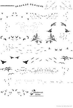 Resultado de imagen de architecture birds