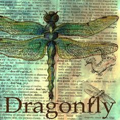 Mixed Media Dragonfly Drawing on Distressed Dictionary Page
