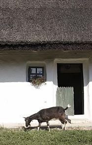 A tápi hegysor házai How Beautiful, Countryside, The Past, Cottage, Architecture, Farmhouse, Animals, Life, Arquitetura