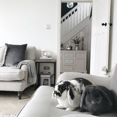 Are You Ready For Living Room Makeover? - Interior Decor and Designing Bay Window Living Room, Living Room Decor Cozy, New Living Room, Living Spaces, Small Living, Victorian Living Room, Classic Living Room, Parquet Flooring, Decoration
