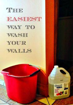 clean walls pin