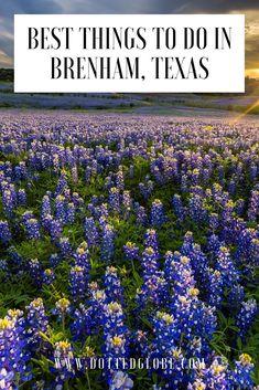 Explore best things to do in Brenham, Texas via Texas Tourism, Texas Travel, Travel Usa, Canada Travel, Brenham Texas, Stuff To Do, Things To Do, Texas Bluebonnets, Washington County
