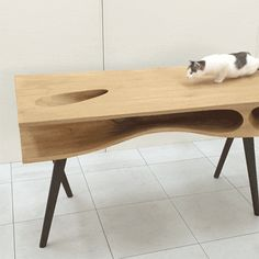 Holes and tunnels within the top of this wooden desk by Hong Kong-based designer Hao Ruan of LYCS Architecture have been designed as a playground for cats.