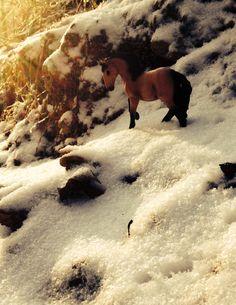 Schleich Lusitano in snow. Schleich photography