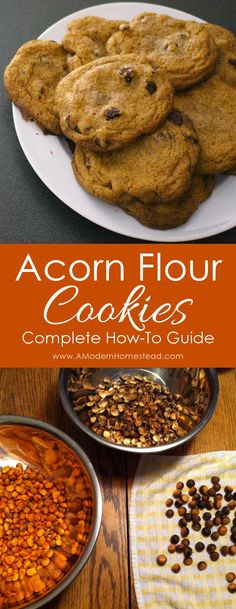 Acorn Flour Chocolate Chip Cookies are a great way to enjoy the splendors of…
