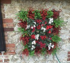 Pixel Garden je jedinečný modulárny zavlažovací systém, chránený patentom. Montáž kvitnúcich stien nevyžaduje žiadne špeciálne znalosti. Systém je možné inštalovať nielen v exteriéri, ale aj vo vnútri budov. Pixel Garden vám otvára predstavivosť na zostavenie vlastných motívov vertikálnych záhrad. #design #exterior #exterier #garden #verticalgarden #vertikalnazahrada #greenwall #zelenastena #design #flower #kvety #kvet #plant #rastliny #pixelgarden #alvex #hanginggardens Christmas Wreaths, Gardening, Holiday Decor, Plants, Lawn And Garden, Plant, Planets, Horticulture