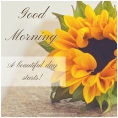 Good Morning image with yellow flower