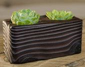 Double Succulent Shou Sugi Ban Wood Planter
