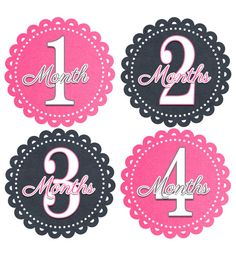 Monthly Onesie Stickers Baby Girls Stickers Month to Month Stickers Baby Shower Gift Baby Month Stickers Photo Prop Pink and Grey 238 via Etsy