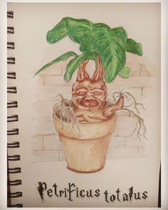 #harrypotter, #mandragora, #drawing, #aquarell, #challenge , #nature, #havefun, #vegetables 30 Day Drawing Challenge, Have Fun, Aqua, Harry Potter, Challenges, Vegetables, Drawings, Nature, Plants