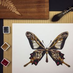 """Vesna Maric on Instagram: """"The Ceylon Rose is a beautiful swallowtail butterfly found in Sri Lanka and is one of the most threatened insects in the world. It's…"""" Founded In, Swiss Army, Sri Lanka, Insects, Corner, Butterfly, World, Rose, Beautiful"""