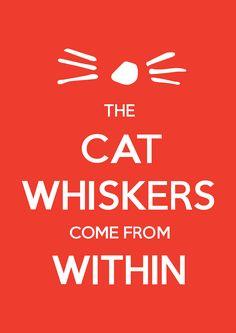 Whiskers Poster YAAAAAAAAAAAS
