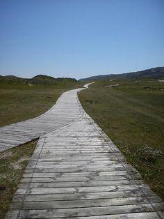 #boardwalk #westcork #barleycove West Cork, Ireland, Destinations, Sidewalk, Country Roads, Adventure, Side Walkway, Walkway, Irish