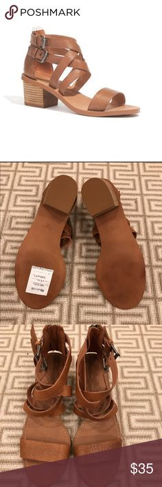 Madewell Lora Chunky Heel Strappy Leather Sandals Sweet & flirty sandals perfect for the spring! Worn only twice. As you can see the strap over the toes has a slightly darker color tone. Madewell Shoes Sandals