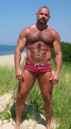 Muscle bear at the beach