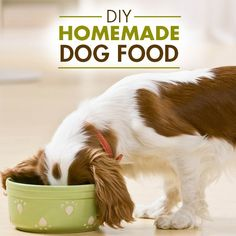 DIY Dog Food made the healthy way - Make this recipe, divide into freezer safe bags, thaw in the fridge the night before, and you've got one delicious & healthy dog food. #DIYPets #Pets