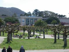 golden gate park   Golden Gate Park - Japanese Tea Garden, California Academy of Sciences ...
