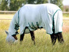 GRATIS VERZENDING Rambo Sweetitch Hoody, vliegendeken van sterk en ademend zonreflectered 1000D polyester met leg Arches, V-Front Closure System, 3-singelsysteem en geschikt voor het Horseware Liner System. Deze deken is geschikt voor paarden met zomereczeem, ook te gebruiken om je paard te beschermen tegen vliegen, dazen, zon ed. Wordt geleverd incl.masker mint/green. (130/183 tm 160/213) Normaal €149,95 nu €124,95 www.limburgsruiterhuis.nl   https://www.facebook.com/limburgruiterhuis