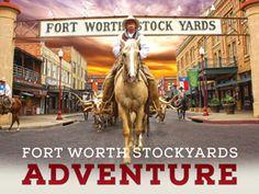 Animals Alive! | Fort Worth Stockyards
