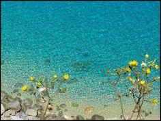 Tropea,Calabria,Italy  zio.paperino