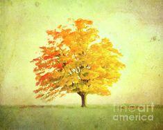 Autumn Trees, Painting, Beauty, Art, Fall Trees, Art Background, Painting Art, Kunst, Paintings