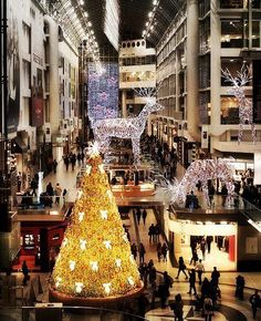 This awesome Christmas tree doesn't have ANY lights on it!!!! The glow is from Swarovski Crystals covering the entire tree <3  Eaton Centre,Toronto