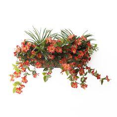 Balconnière Hibiscus Orange avec verdure 28