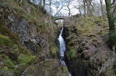 """Aira Force - comes from the Scandinavian """"Eure"""" (water) and """"Foss"""" (fall) - hence """"waterfall""""."""