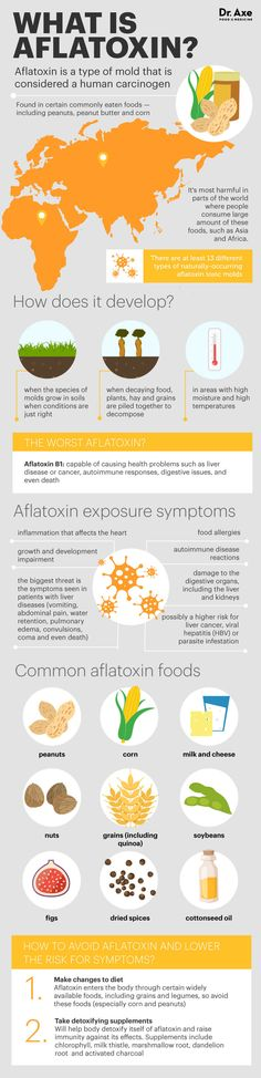 What is aflatoxin - Dr. Axe