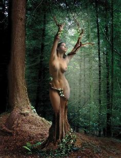 """""""In some gnostic texts, Eve  (Sophia) transforms into the tree of life to fool the Archons"""""""