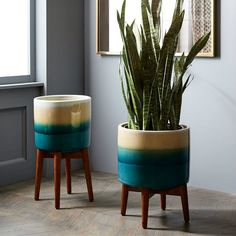 Showcase your greenery with these stylish planters  Living in a shoebox