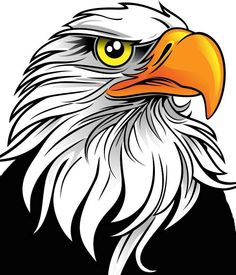 44 images of eagle mascot clipart you can use these free cliparts rh pinterest com clip art eagle soccer clip art eagle soccer