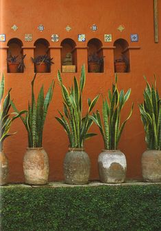 inspiration from mexican interior design, museo robert brady Mexican Interior Design, Home Interior Design, Mexican Courtyard, Diy Jardin, Interior Decorating Tips, Dining Table Design, Dark Interiors, Spanish Style, Indoor Plants