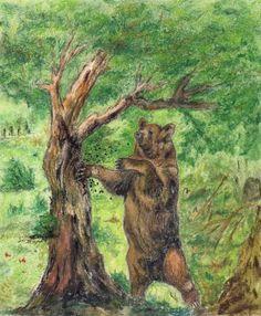 El oso de la miel visita las colmenas