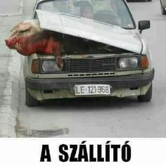 Transporter..:)))