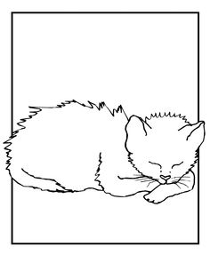 79 Best Favorite Cat Colouring Pages Images Cat Coloring Page Cat