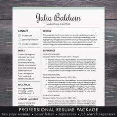 professional resume cv template mac or by theshinedesignstudio - Resume Templates Mac Word