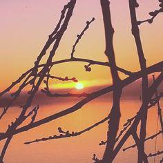 Sunset Celestial, Sunset, Outdoor, Nature, Outdoors, Sunsets, Outdoor Games, The Great Outdoors, The Sunset