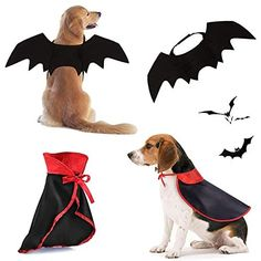 Adjustable Size? Using velcro to adjust according to the neck circumference?19.3-24.4)in, Chest?26.8-33.5)in?easy to wear it. Large Dog Costumes, Zombie Cosplay, Bat Animal, Halloween Costume Shop, Black Felt, Bat Wings, Cloak, Holiday Outfits, Doge