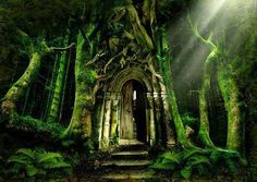Immagine di fantasy, forest, and door