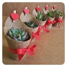 Garden Wedding Favors Diy Gifts Ideas For 2020 Valentine Crafts, Valentines, Cactus Y Suculentas, Diy Wedding Favors, Mothers Day Crafts, Diy Gifts, Flower Arrangements, Diy And Crafts, Succulents