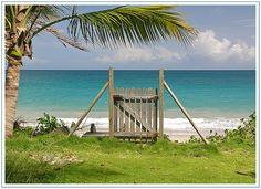 Paradis gate