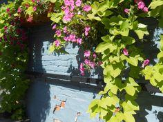 An old wall in Leavenworth Wa. 2013