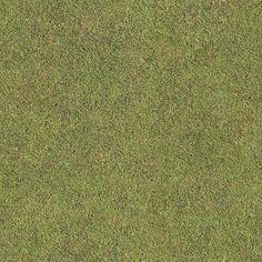 Seamless Golf Green Grass Texture + (Maps)   texturise