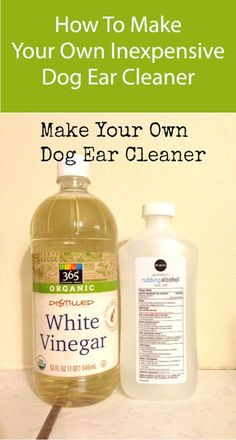 Dog Ear Cleaner. An inexpensive formula for dog ear cleaner. Check out the other Make at home dog recipes. #DogEarCare #DogRemedies Cleaning Dogs Ears, Ear Cleaning, Cleaning Hacks, Dog Ear Cleaner Homemade, Ear Cleaner For Dogs, Dog Ear Wash, Ear Wash For Dogs, Beagle, Dogs Ears Infection